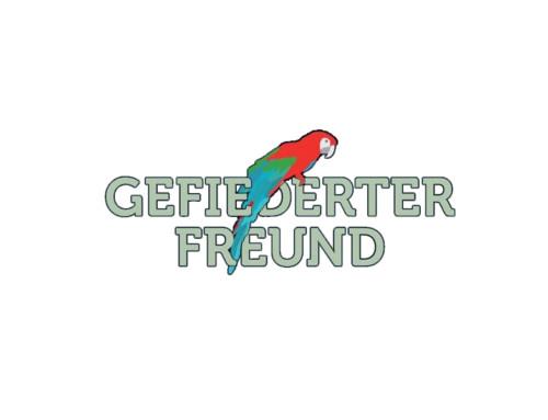 Rabenvögel in der Schweiz – eigenwillige und intelligente Pfleglinge